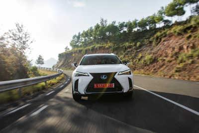 Lexus UX 250h-13
