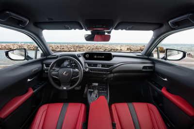 Lexus UX 250h-14